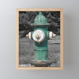 Mueller Super Centurion Green Bonnet and Barrel with White Caps Framed Mini Art Print
