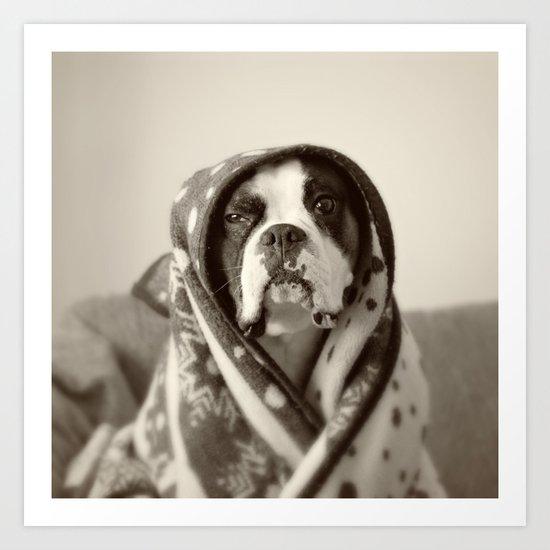 Obi Wan (Buck the world's most lovable boxer dog) Art Print