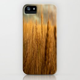 Harvest Time - Golden Wheat in Colorado Field iPhone Case