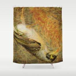 Australian Noisy Miner Shower Curtain