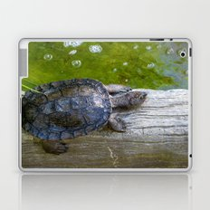 Hero in a Half Shell Laptop & iPad Skin