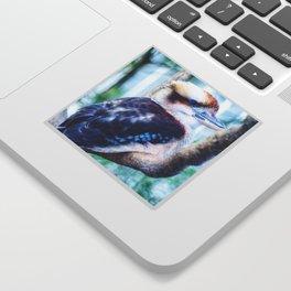 A Kookaburra Sticker