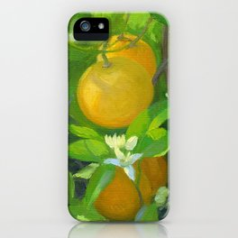 Orange Tree with Oranges and Blossoms iPhone Case