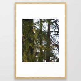 russia2 Framed Art Print