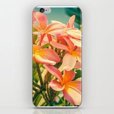Magnificent Existence iPhone & iPod Skin