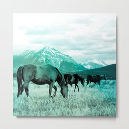 wild horses turquoise aesthetic wildlife art altered photography Metal Print