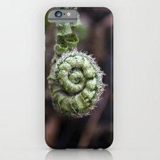 Fiddlehead III iPhone 6s Slim Case