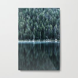 ~ tranquil forest ~ Metal Print