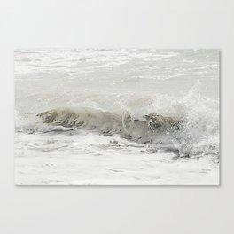 Milky Splash Canvas Print