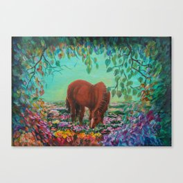 Horse in the Field Canvas Print