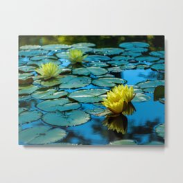 Yellow Water Lillies Metal Print