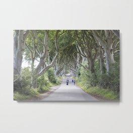 Dark Hedges, Northern Ireland Metal Print