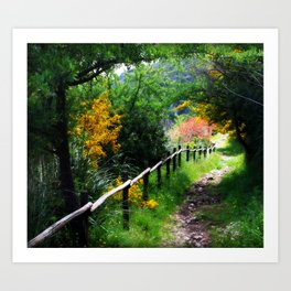 The Path Almost Taken Art Print