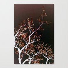 inverse tree Canvas Print
