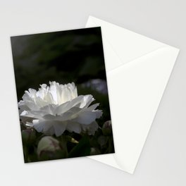 Stand alone Stationery Cards