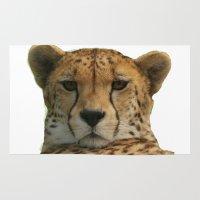 cheetah Area & Throw Rugs featuring Cheetah by Sean Foreman