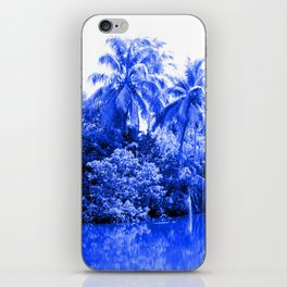 Florida in Blue iPhone Skin