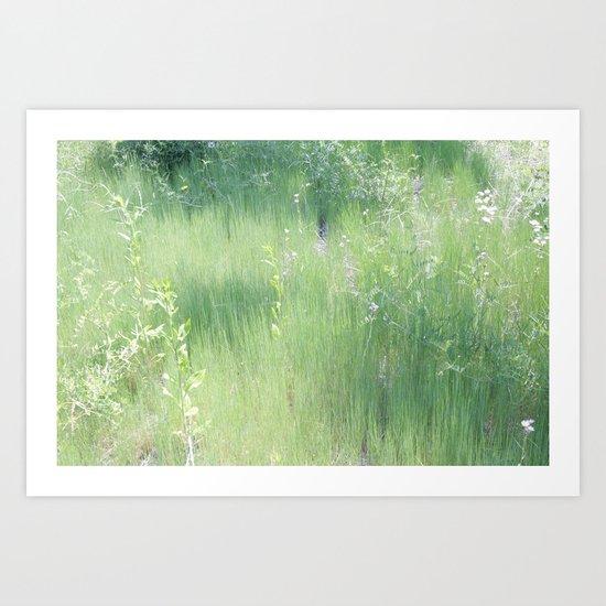 Light Grass Art Print