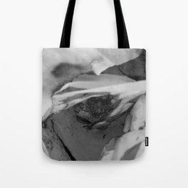 Burn 4 Tote Bag