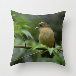 Birds from tropical forest Throw Pillow