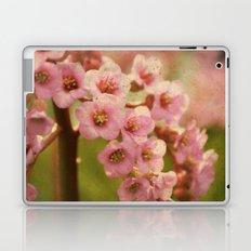 Little Belles Laptop & iPad Skin