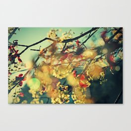 Welcome Spring | 01 Canvas Print