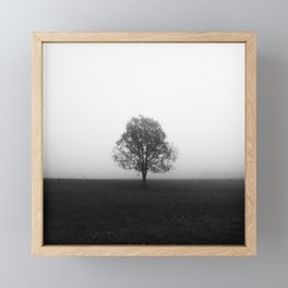 Lonely tree in fog black and white Framed Mini Art Print