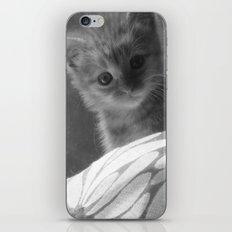 emmabelle iPhone & iPod Skin