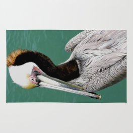 Brown Pelican Upstanding Rug