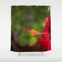 Red Hybiscus Shower Curtain