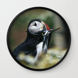 ATLANTIC PUFFIN WITH SANDEELS Wall Clock