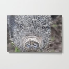 This little piggy... Metal Print