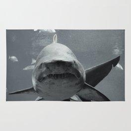 Shark Intense Rug