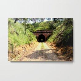 Cheviot Tunnel #2 Metal Print