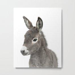 Baby Donkey Metal Print