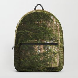 Redwood Forest Black Bear Adventure - National Parks Nature Photography Backpack