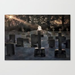 Gravestones and statue Canvas Print