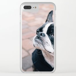 Bruce the Boston Terrier Pug Clear iPhone Case