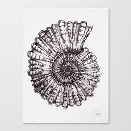 ammonite I Canvas Print