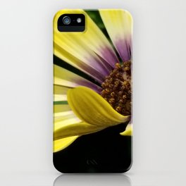 Pick me please iPhone Case