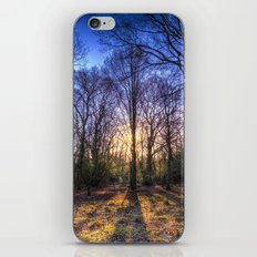 The Morning Sun Forest iPhone & iPod Skin