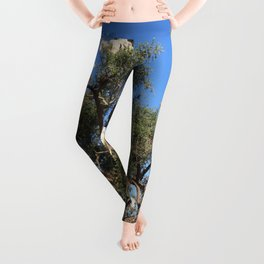 Goats in a tree Leggings