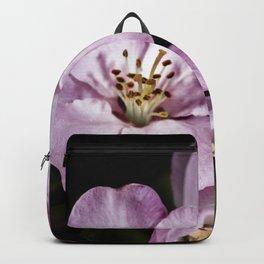 Pink Pastel apple blossoms Backpack