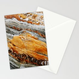Gray Copper Marbled Petrified Wood Stationery Cards