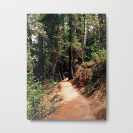 Burney Trail Metal Print