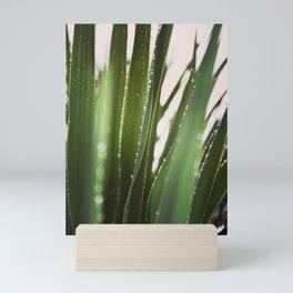 Sunlit Awakening Mini Art Print