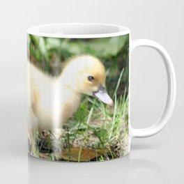 Baby Duckling strolling on a lawn Coffee Mug