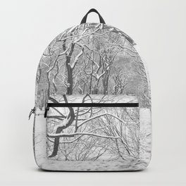 New York City Snow Backpack