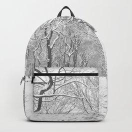 New York City Snow Backpack