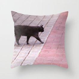 Cat Walking  6589 Throw Pillow